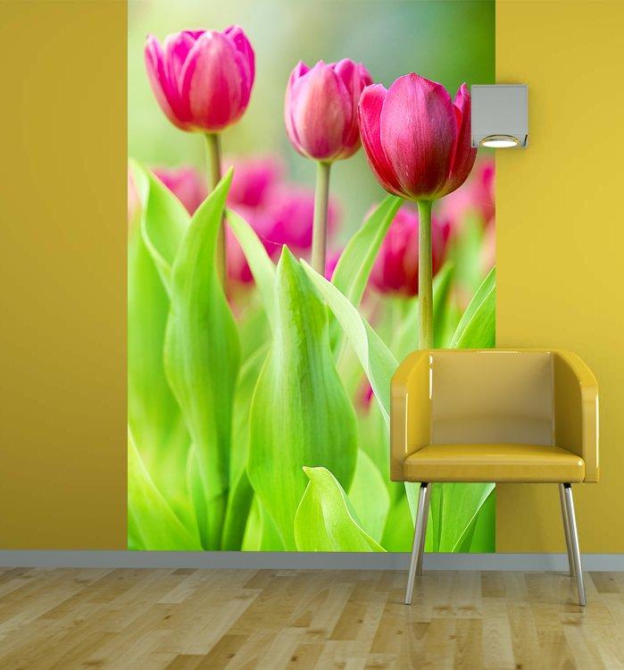 Фотообои тюльпаны в интерьере фото ...: inhomes.ru/public/43-obzor/1158-fotooboi-s-tyulpanami-v-interyere.html