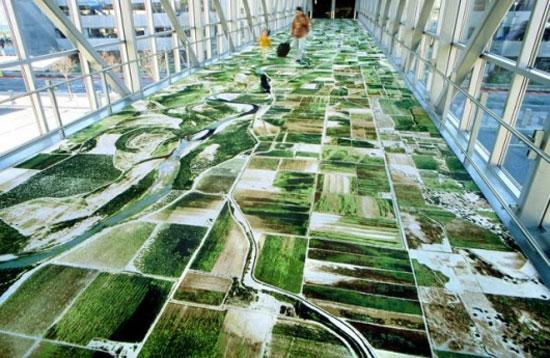 домашние ковры