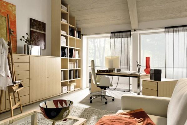 дизайн домашних кабинетов