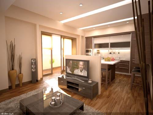 кухня объединенная с гостиной, фото